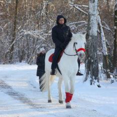 и тут появляется Он на белом коне