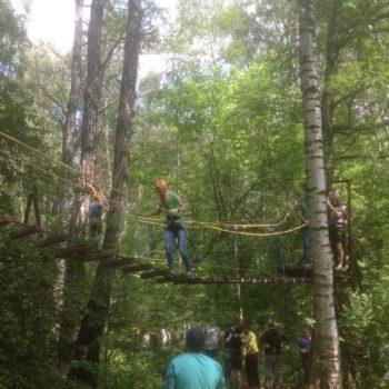 веревочный курс высотный упражнение Лестница